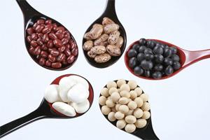 Top 10 loại hạt mẹ ăn con thông minh
